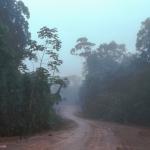 11. Altamira, cité-dortoir des travailleurs des chantiers de Belo Monte, se situe en bordure de la Transamazonienne.