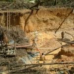 27. Outre les conséquences de l'assèchement de leurs terres les Indiens devront affronter l'intrusion des garimpeiros et les dangers qui vont avec.