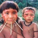 28. Les Indiens du Xingu risquent ainsi, comme les Yanomamis (photo), de succomber aux épidémies véhiculées par les orpailleurs.