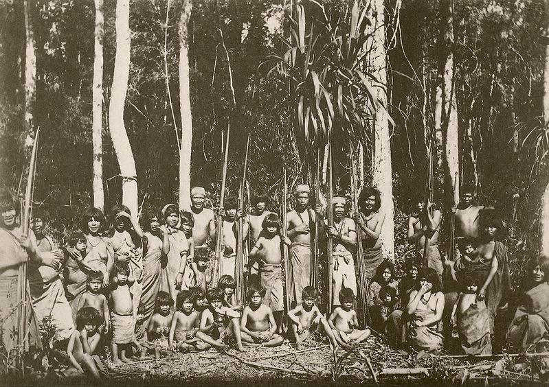 indiens-bresil13